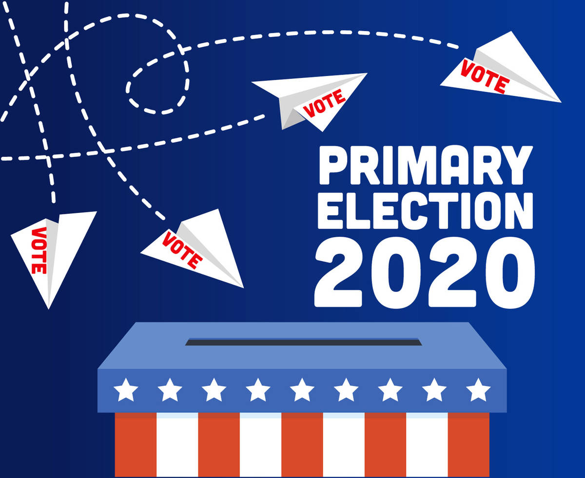 featured image for: <center>COUNTY CLERK HANLON ADVISES OF MAJOR CHANGES TO THE JULY 7, 2020 PRIMARY ELECTION PROCESS PER THE GOVERNOR'S EXECUTIVE ORDER</center>